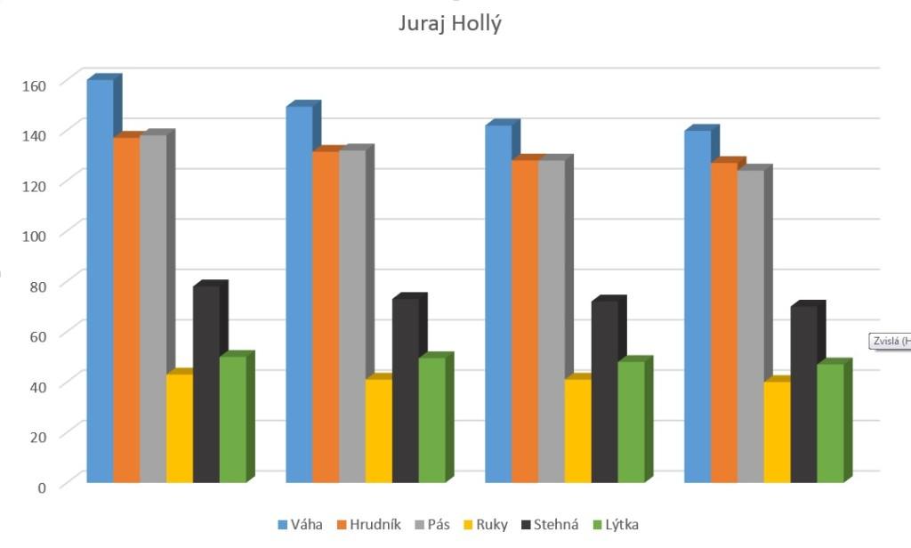 JURAJ HOLLY